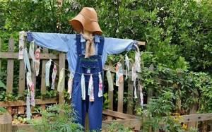 Огородное пугало своими руками: 5 интересных идей