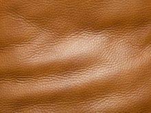 Обои под кожу в интерьере: 5 советов по выбору и применению